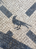 A crow. I hope you're seeing this! (Entrance to A Vida Portuguesa)