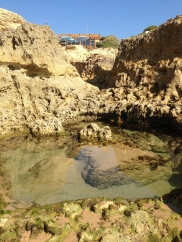 Tide pool at Albandeira. Mainly percebes and sand.