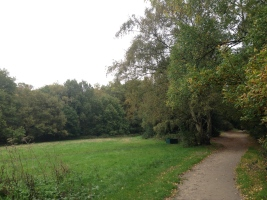 Hampstead Heath! I'll be back when it's not dusk, and I have a partner to walk with through the woods.