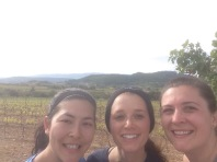 Morning run through the vineyards!
