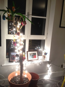 Our makeshift Christmas tree. Sorry, Cassius.