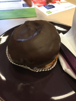 The infamous bossche bol