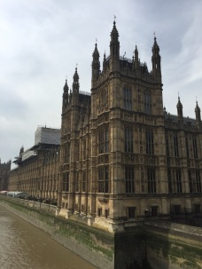 The Houses of Parliament never cease to be stunning.