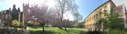 Westminster Abbey gardens 2