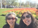I loved the tulips!