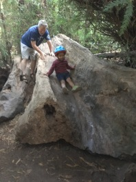 Fallen tree slide. Been around since we were kids! Having his helmet on after the bike ride to the slide was a good look, too!