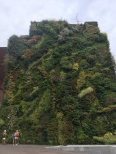 Green wall next to the Caixa Forum