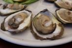 Mali Ston oysters