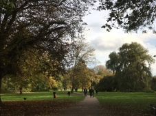 Almost the end of your walk: Verulamium Park: 100 acres says this is the central park in the vicinity!