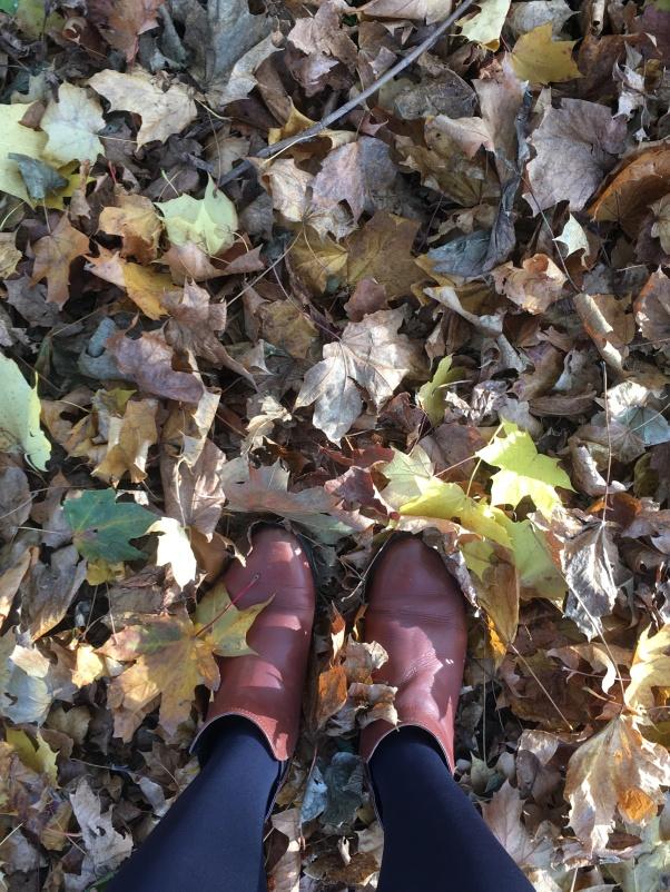 It's fall!!!