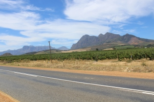 Pulled over to capture the contrast of road, vineyard, and rocky hills.