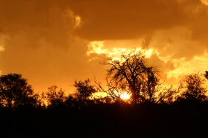 Now you can see why sundowners was my favorite time of day!
