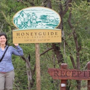 Honeyguide, I love you.