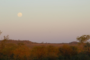 There are about 18 more of these pics with the moon in various positions against this sky.