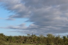Skyline on our last drive