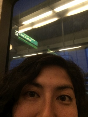 I think I'm finally aboard the correct train!
