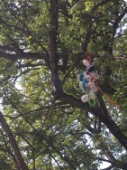 In Sweden, lost pacifiers at the park are collected and hung from trees like ornaments